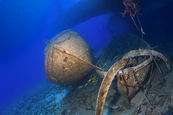 """фото """"Lifeboats"""" метки: подводные,"""