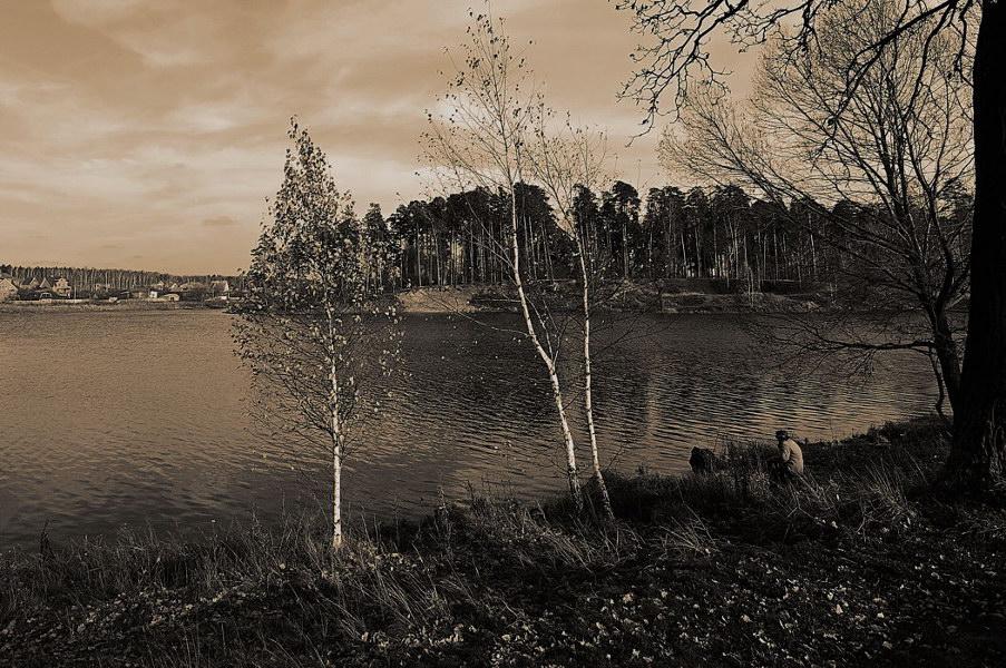 """фото """"Осень белой вороны (2008)"""" метки: пейзаж, осень"""