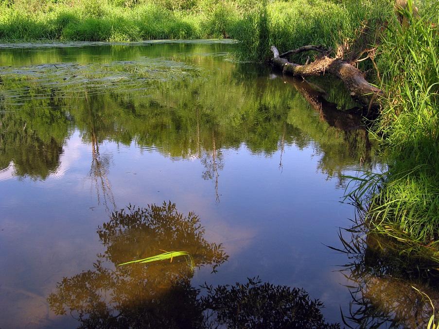 """фото """"Летняя, слегка абстрактная"""" метки: пейзаж, вода, лето"""