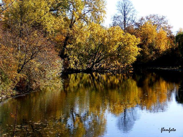 "фото ""Reflection in the lake."" метки: природа,"