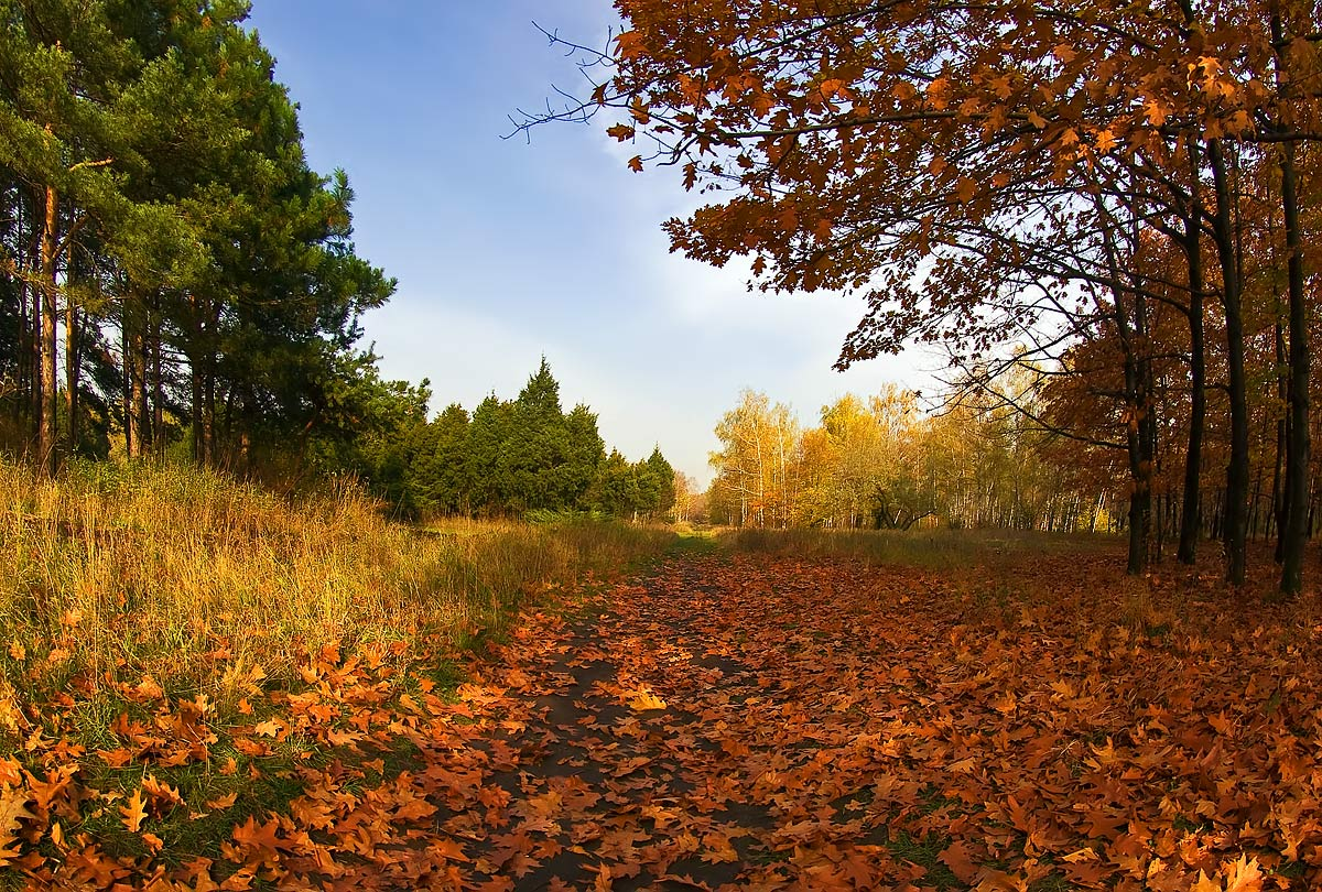 "фото ""Тёплый октябрь"" метки: пейзаж, осень"