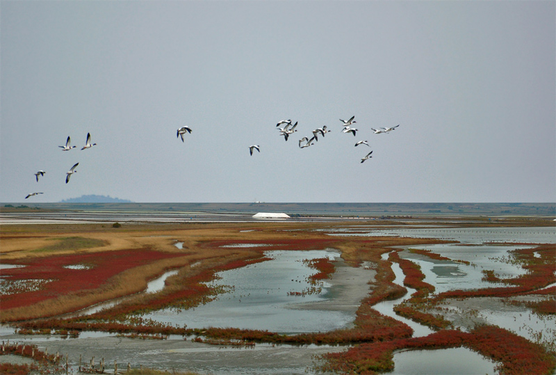 "фото ""Via Pontica"" метки: пейзаж, вода"