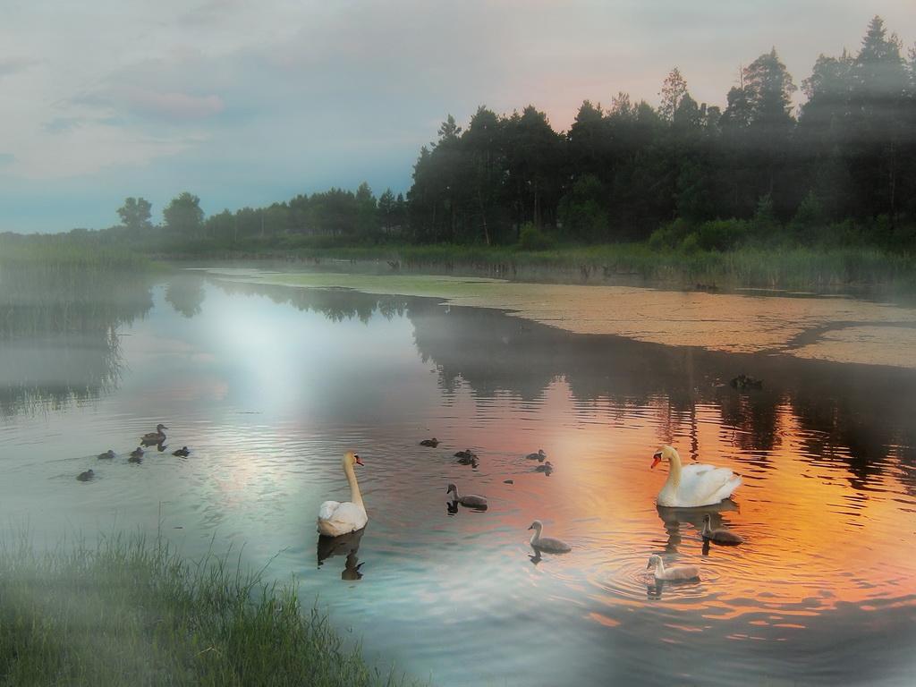 "фото ""соседи"" метки: пейзаж, закат"
