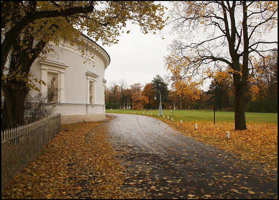 """фото """"Елагин остров. Золотая осень (3)"""" метки: пейзаж, осень"""