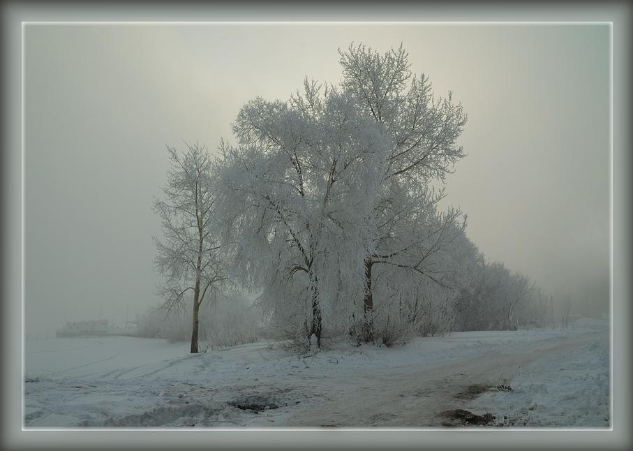 "фото ""Серое утро"" метки: пейзаж, закат, зима"