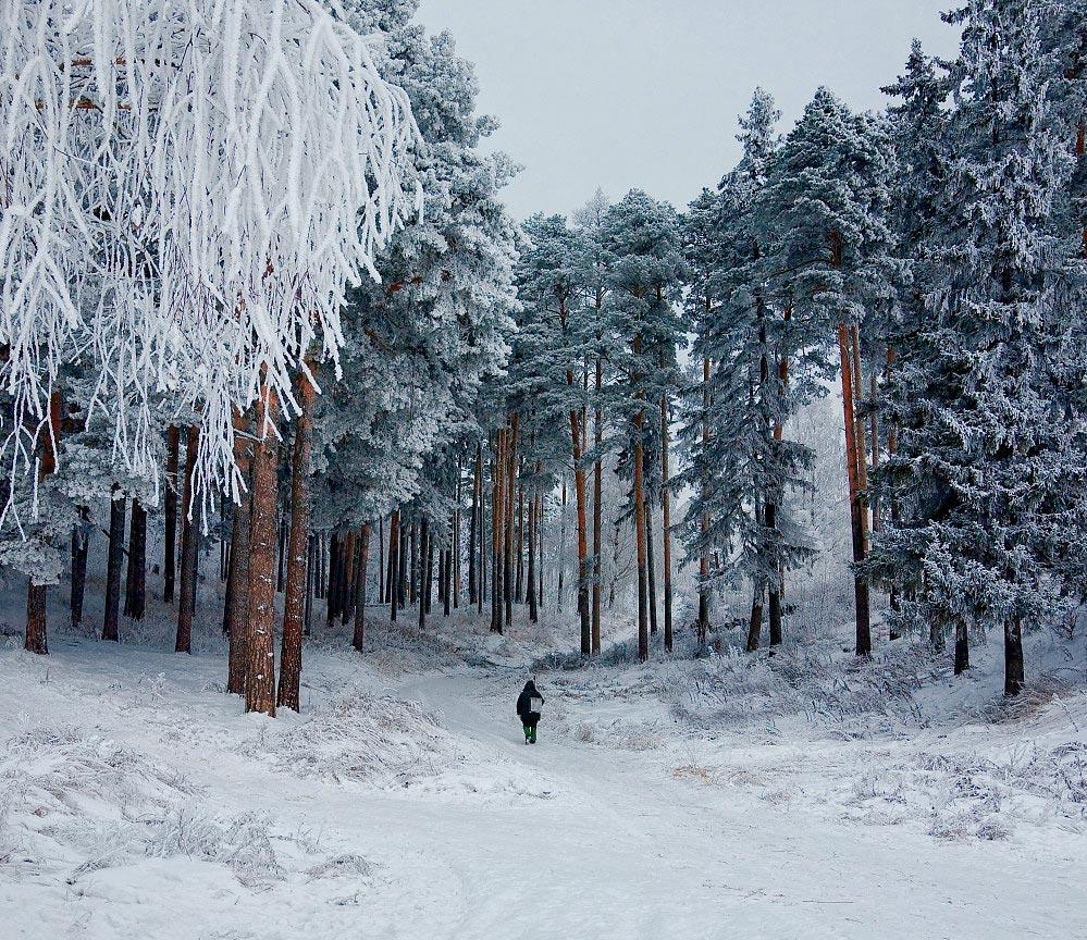 """фото """"С рыбалки"""" метки: пейзаж, зима"""