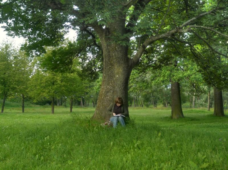 """фото """"На холмике. Павловск."""" метки: пейзаж, жанр, лето"""