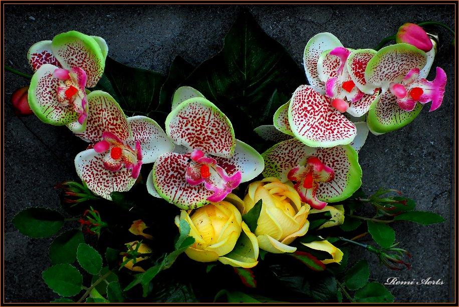 """фото """"for you my friends"""" метки: природа, макро и крупный план, цветы"""