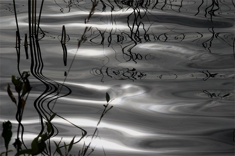 """фото """"Still water"""" метки: пейзаж, вода"""