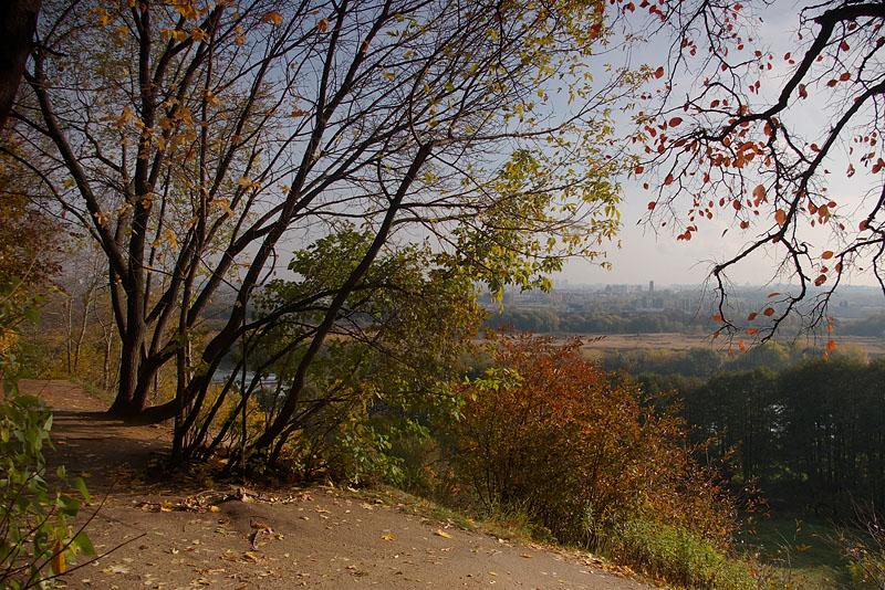 """фото """"Осенняя."""" метки: пейзаж, осень"""