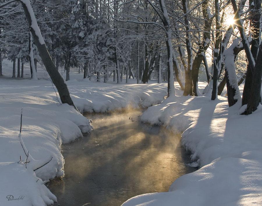 "фото ""Теплота"" метки: пейзаж, зима"
