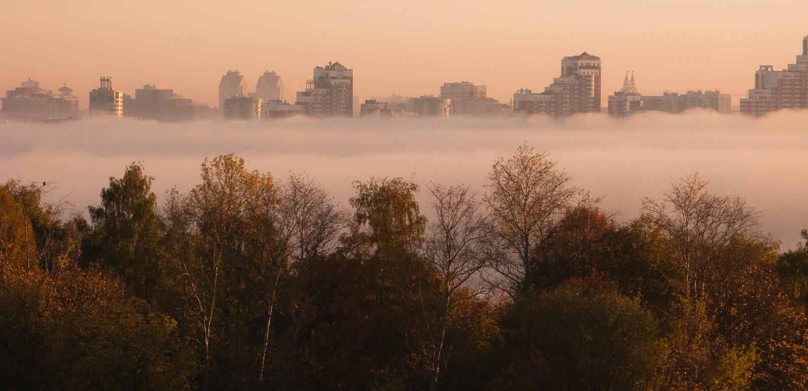"""фото """"Разделительная полоса"""" метки: пейзаж, осень"""