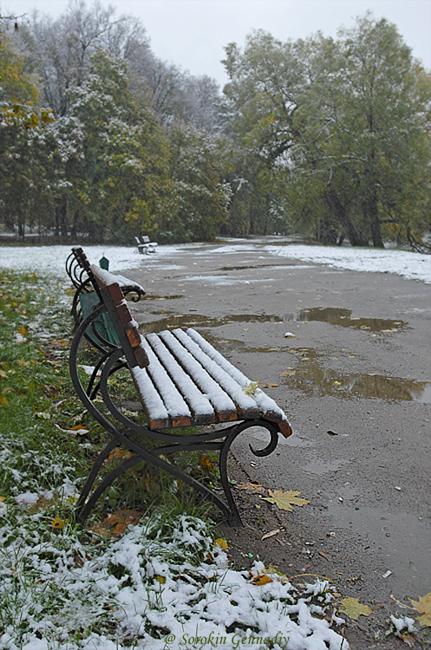 """фото """"Первый снег."""" метки: пейзаж,"""