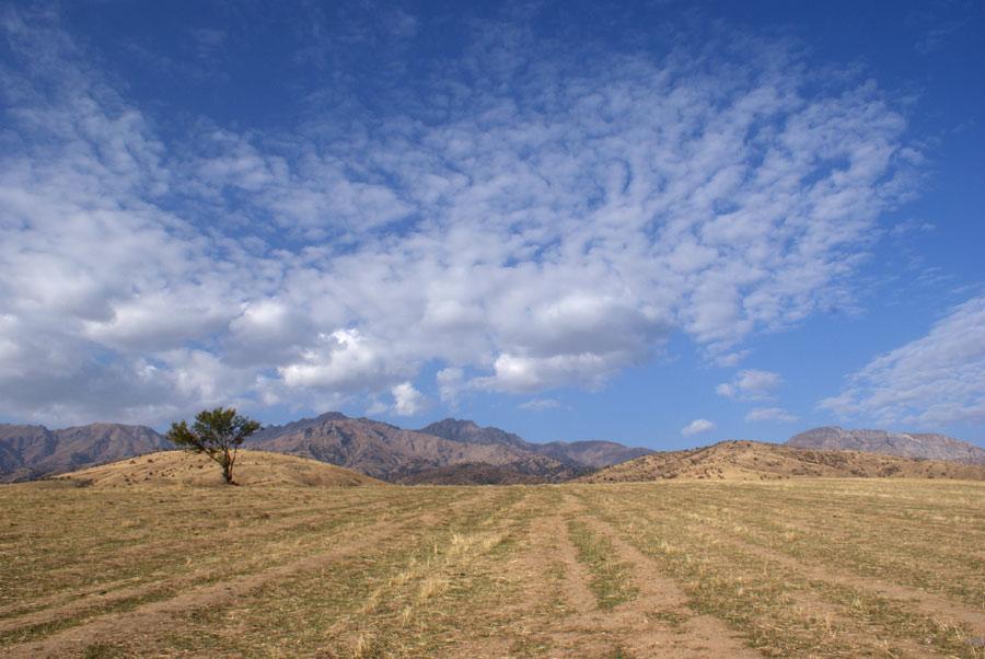 """фото """"Осенние линии"""" метки: пейзаж, горы, осень"""