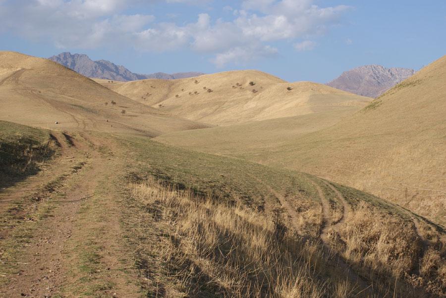 """фото """"Холмы Каржантау"""" метки: пейзаж, горы, осень"""