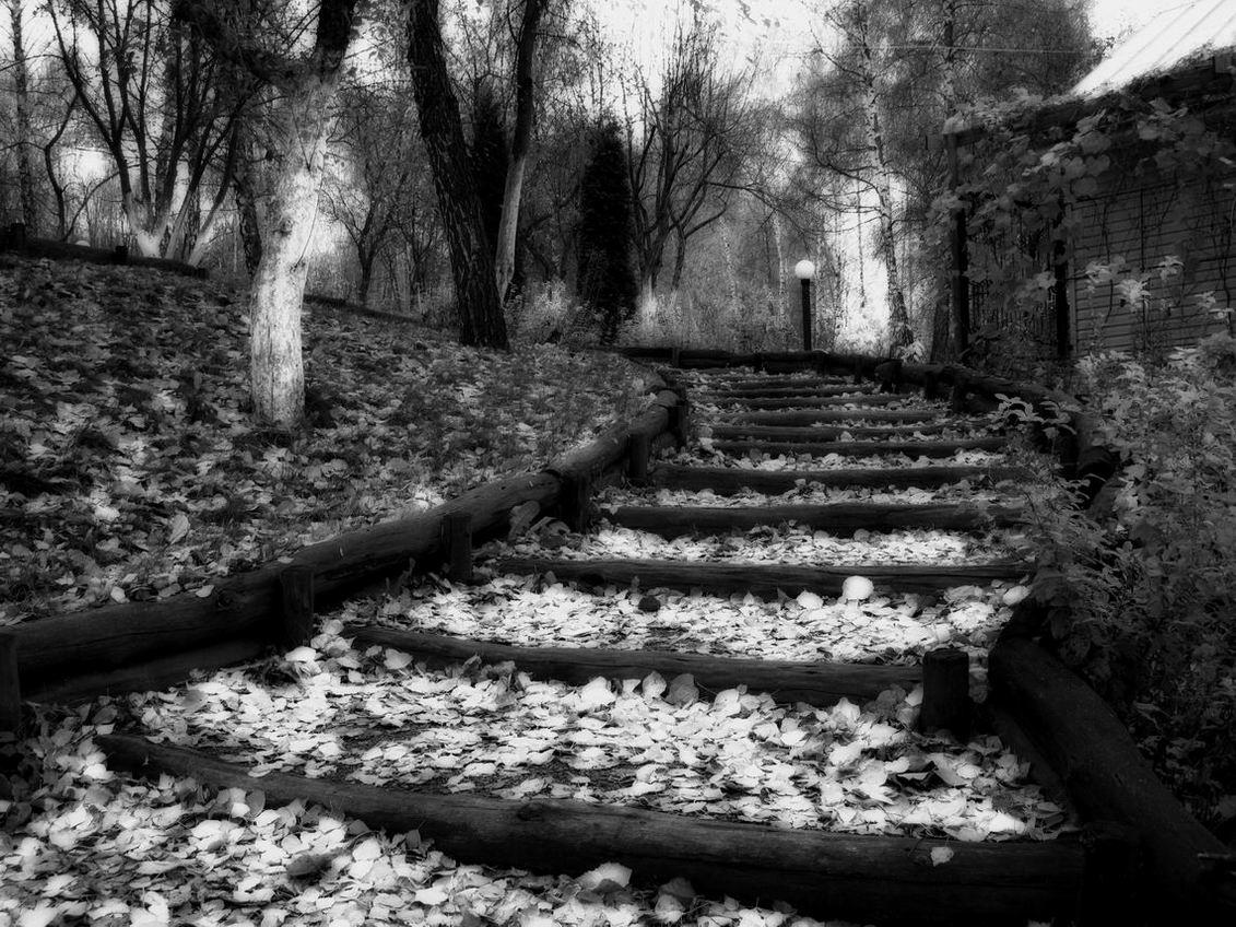 """фото """"Осенний этюд"""" метки: архитектура, пейзаж,"""