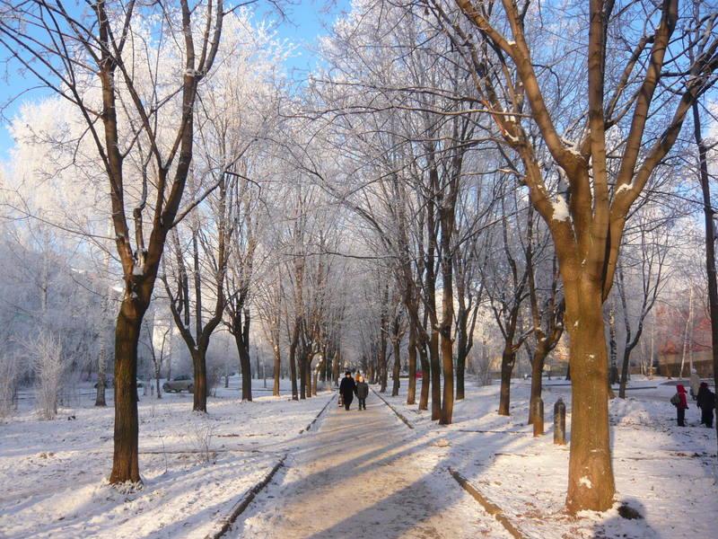 "фото ""Аллейка. Зима."" метки: пейзаж, город, зима"