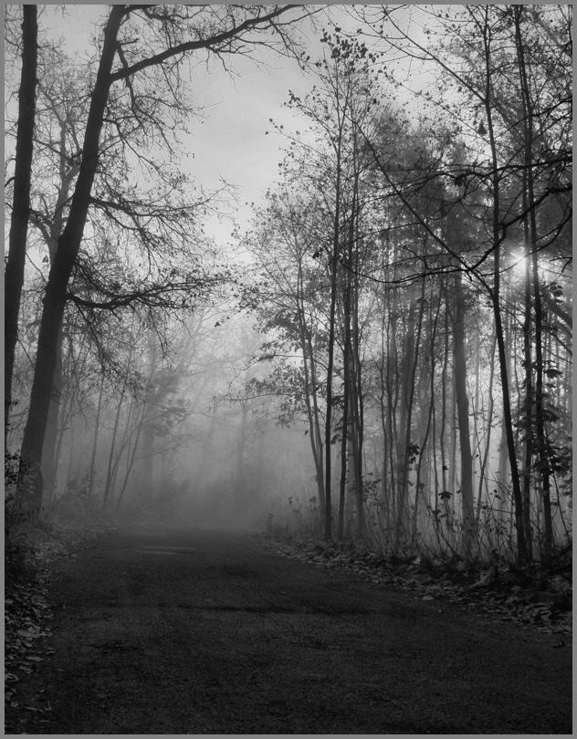 """фото """"Утро..."""" метки: пейзаж, осень"""