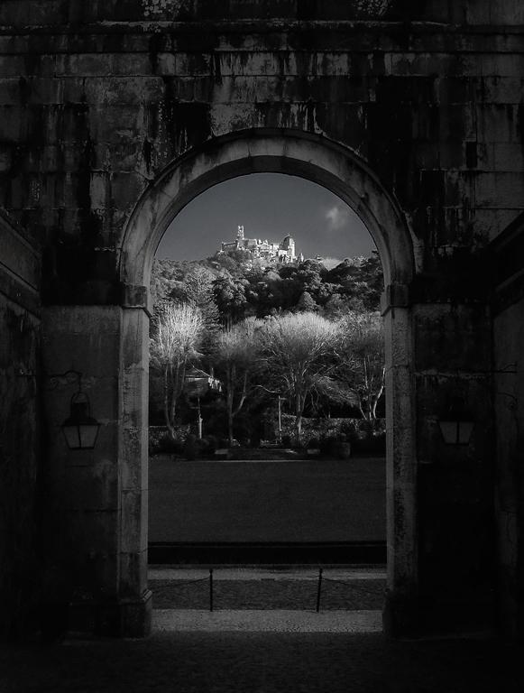 "фото ""Sintra in Seteais"" метки: путешествия, черно-белые, Европа"