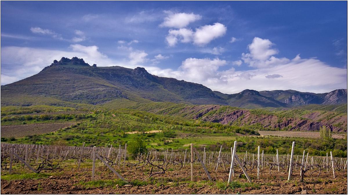 """фото """"виноградники Демерджи"""" метки: пейзаж, горы"""