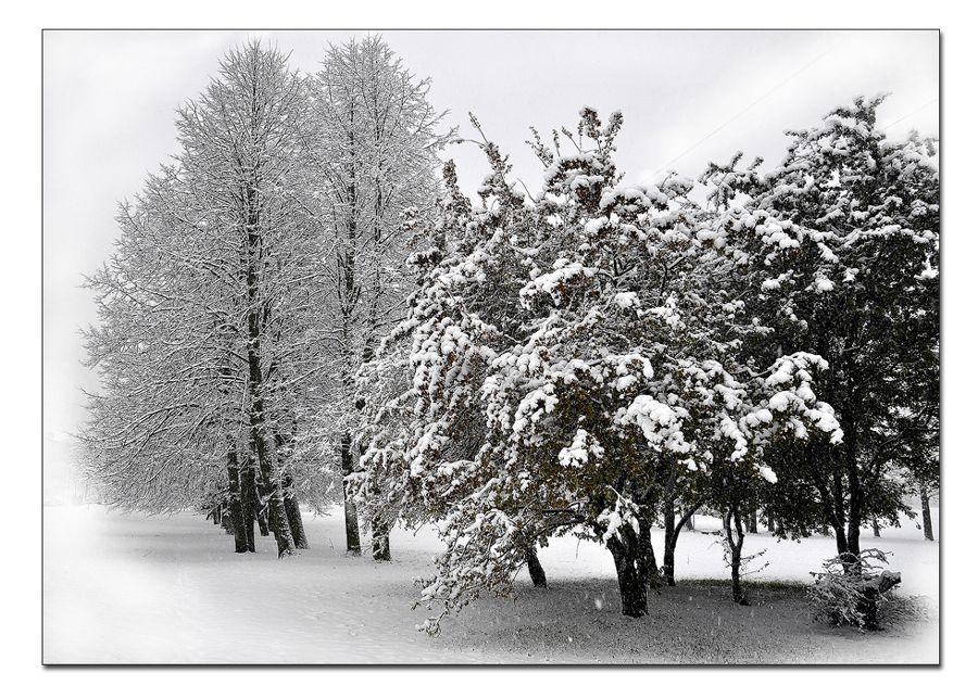 """фото """"Снегопад"""" метки: пейзаж, город, ночь"""