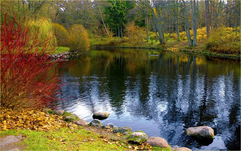 "фото ""В парке"" метки: пейзаж, осень"