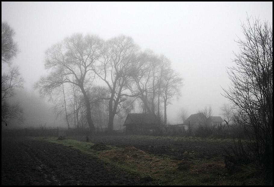 """фото """"Ноябрьская, туманная"""" метки: пейзаж, осень"""