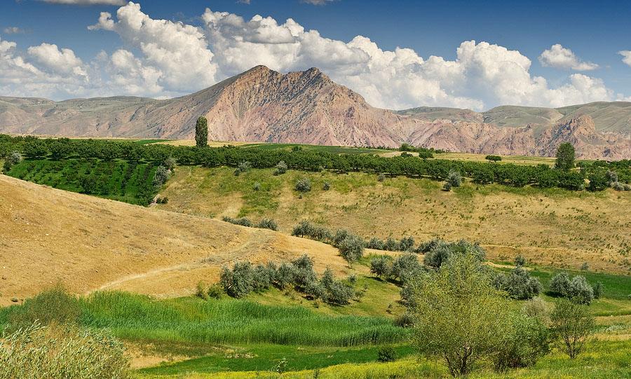 """фото """"Лето в горах."""" метки: пейзаж, горы"""
