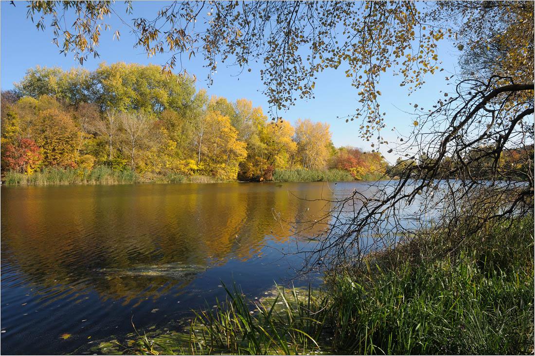 "фото ""просто осень"" метки: пейзаж, осень"