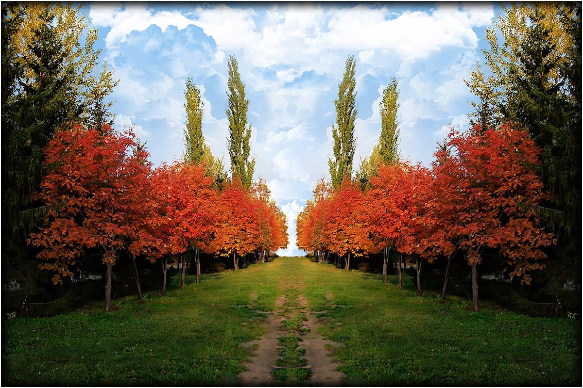 """фото """"ЧАРОВНИЦА ОСЕНЬ"""" метки: пейзаж, осень"""