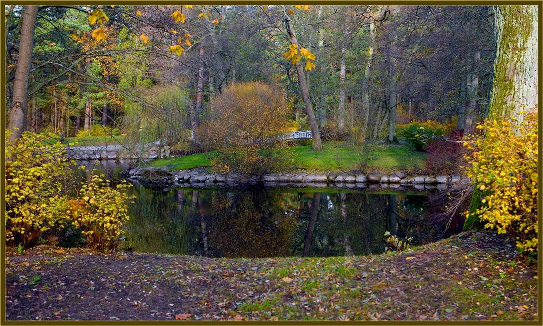 "фото ""Осенняя абстракция"" метки: пейзаж, осень"
