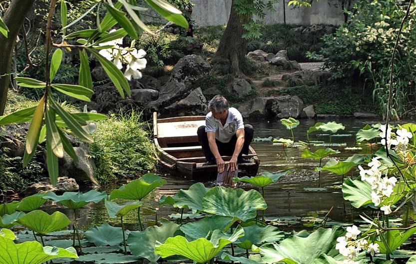 """фото """"рыбак в заводях Суджоуского озера ."""" метки: пейзаж, путешествия, Азия, вода"""
