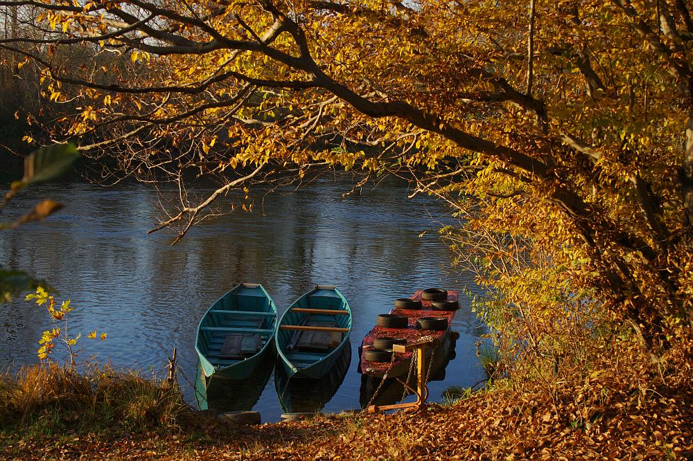 "фото ""fall along the river #1"" метки: пейзаж, вода, осень"
