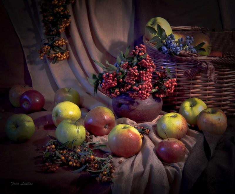 """фото """"щедрая Осень"""" метки: натюрморт,"""