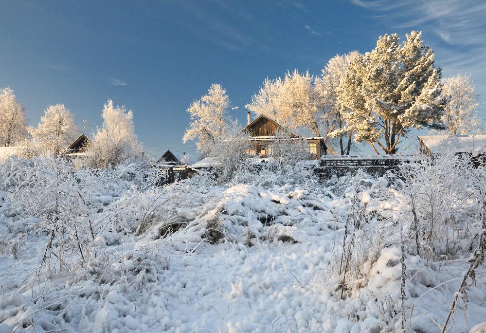 """фото """"Сквозь снежные заросли"""" метки: пейзаж, зима"""