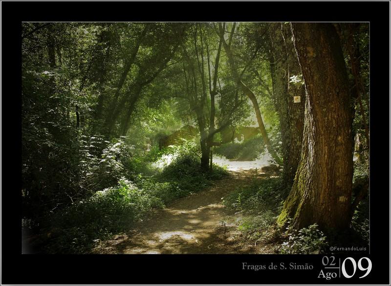 """фото """"Fragas de S.Simão"""" метки: ,"""