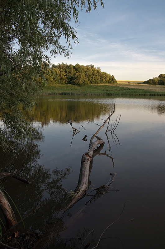 """фото """"Безмятежность"""" метки: пейзаж, вода, закат"""