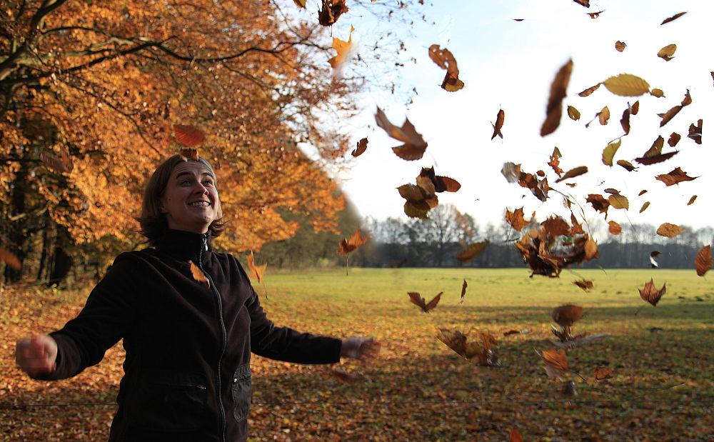"""фото """"Autumn wind"""" метки: пейзаж, осень"""