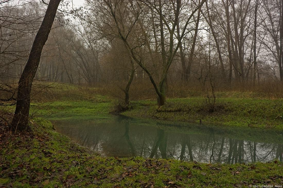 """фото """"осенний пруд"""" метки: пейзаж, осень"""