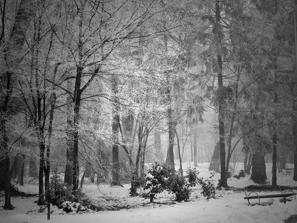 """фото """"***"""" метки: пейзаж, черно-белые,"""