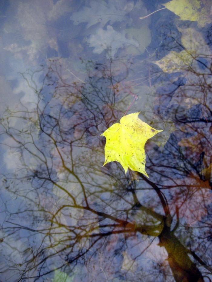 """фото """"Одиночество..."""" метки: природа, разное,"""