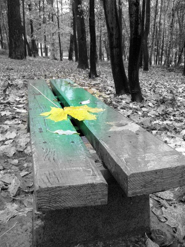 """фото """"Грусть..."""" метки: разное, пейзаж, осень"""
