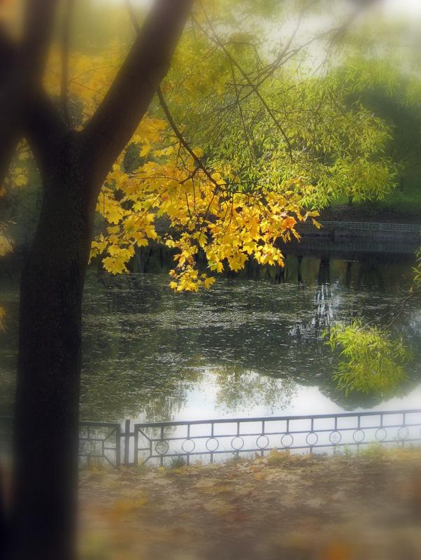 """фото """"Погружаясь в осень..."""" метки: пейзаж, природа, осень"""