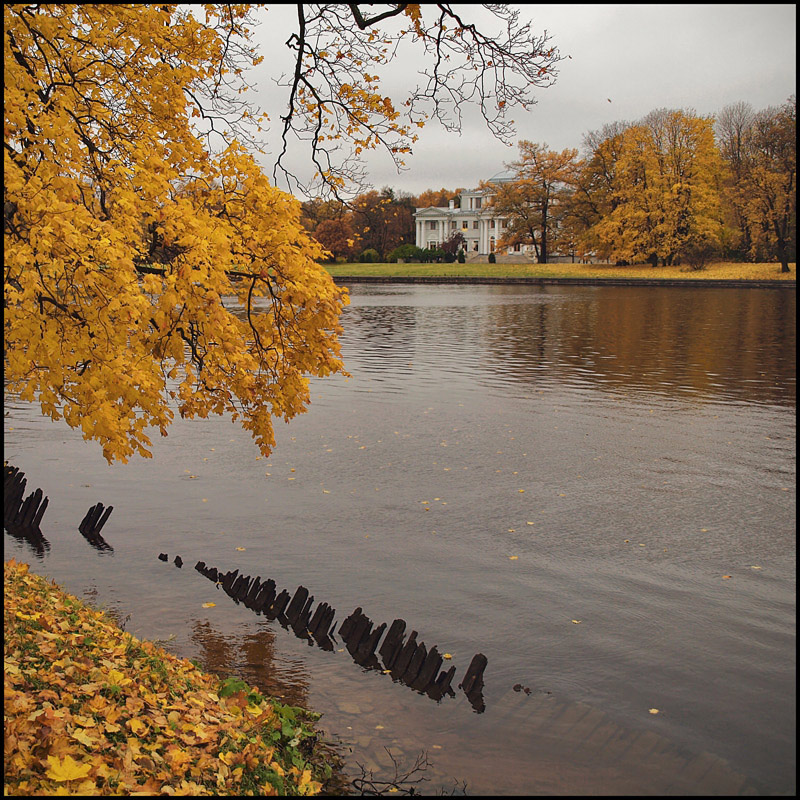 "фото ""осенний вид на Елагин с Каменного острова"" метки: пейзаж, осень"