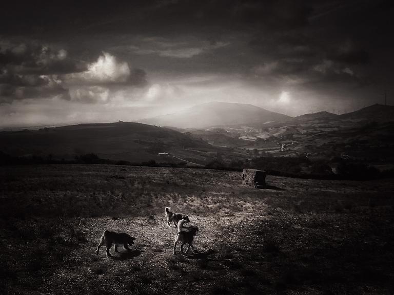 "фото ""Countryside"" метки: пейзаж, путешествия, Европа, закат"
