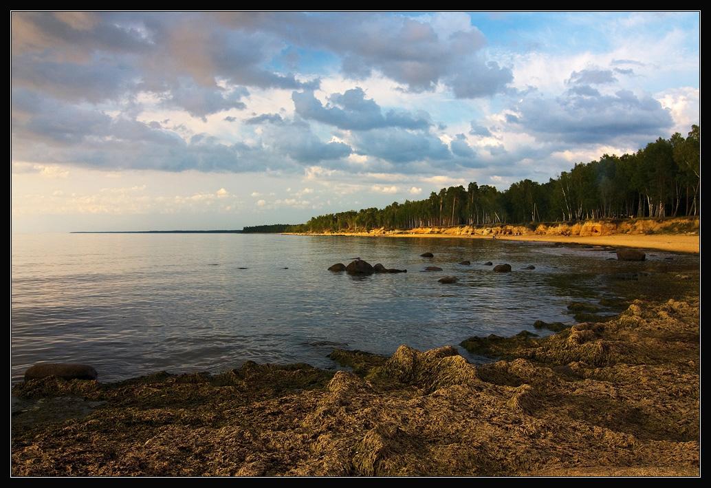 "фото ""Запах водорослей"" метки: пейзаж, вода, закат"
