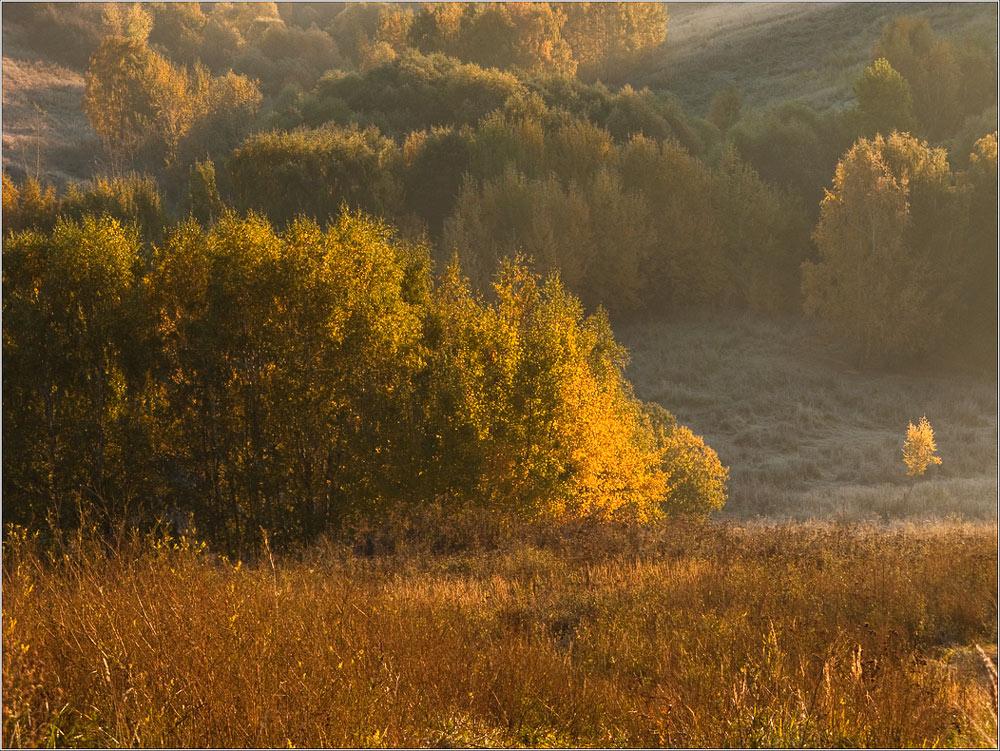 """фото """"Первые заморозки"""" метки: пейзаж, осень"""