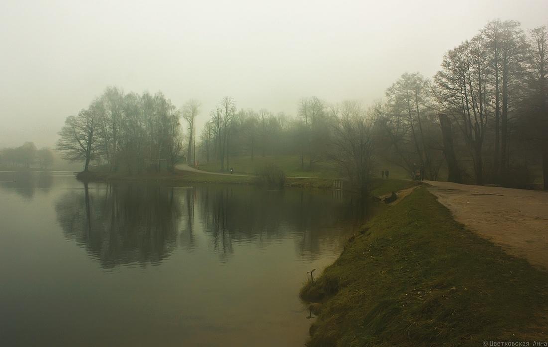 """фото """"вечерний туман.."""" метки: пейзаж, осень"""