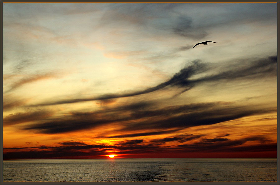 "фото ""Онежский закат"" метки: пейзаж, вода, закат"