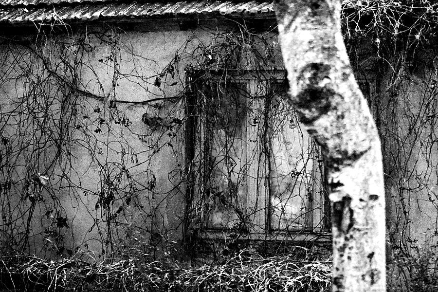 """фото """"Окно в деревне."""" метки: жанр,"""